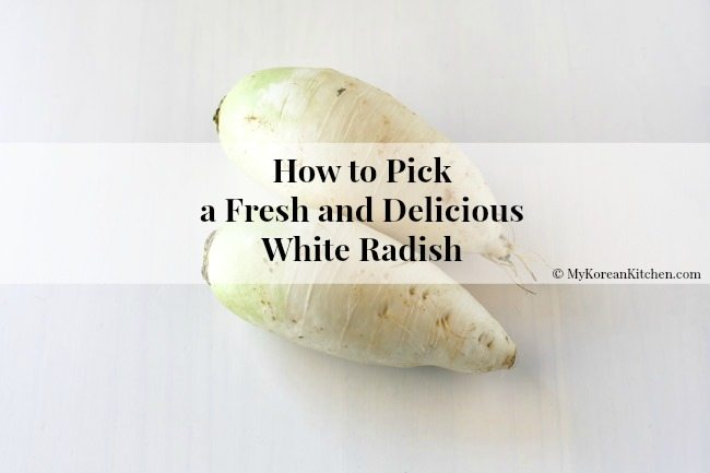 How to Pick a Fresh and Delicious White Radish | MyKoreanKitchen.com